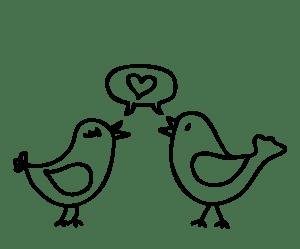 birdslove
